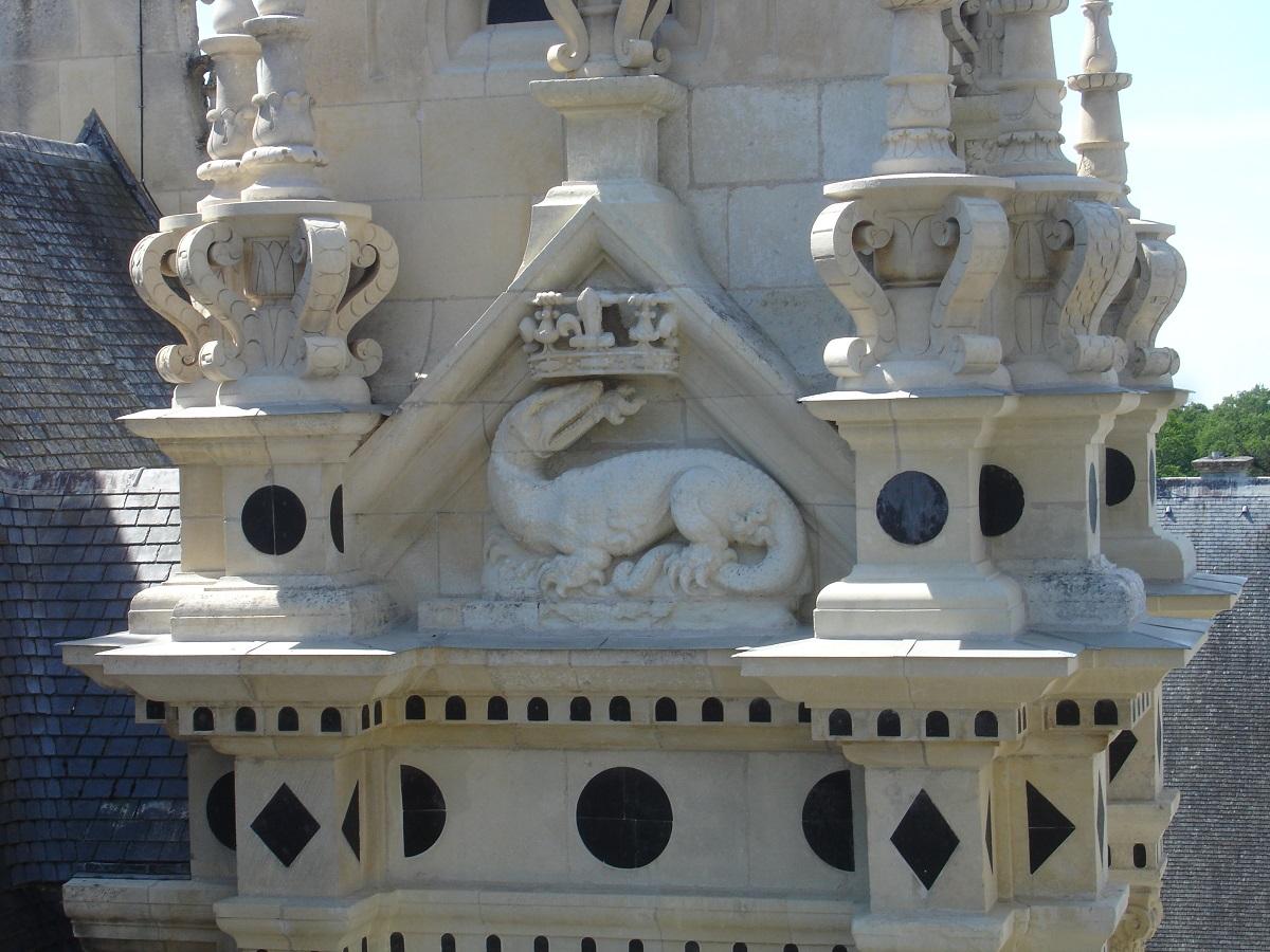 Salamandres au château de Chambord