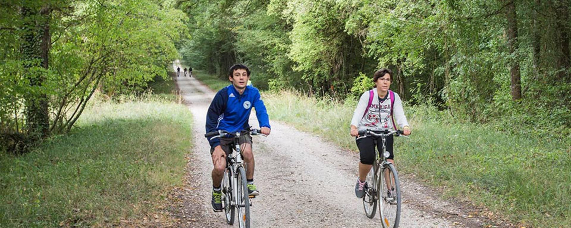 Échappées à vélo dans la forêt solognote. © OTBC