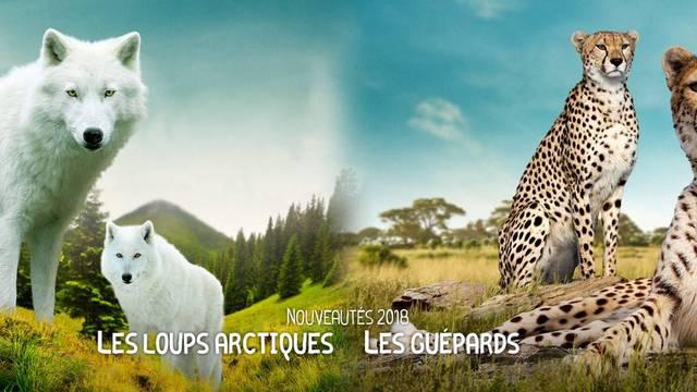 Les animaux du ZooParc de Beauval.