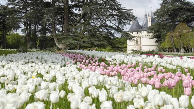 Les jardins des châteaux au printemps