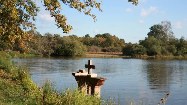 Les étangs de Sologne forment un milieu naturel riche. © OTBC