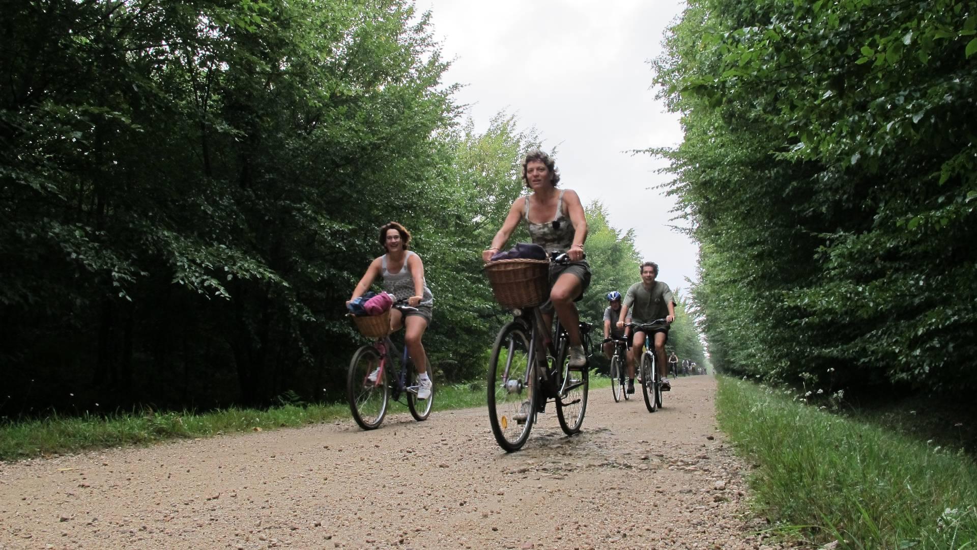Les forêts et les châteaux en vélo. © OTBC