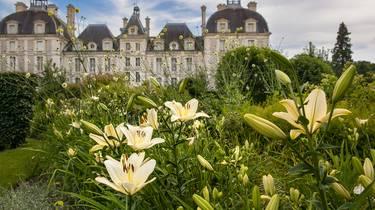 Le jardin des apprentis du château de Cheverny. © CJN Thierry