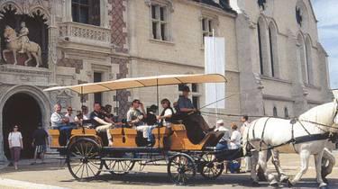 Attelage devant le château de Blois. © OTBC