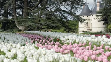 Les jardins de Chaumont-sur-Loire