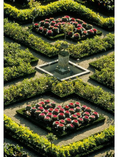 Le jardin de Villandry © Catherine Bibollet