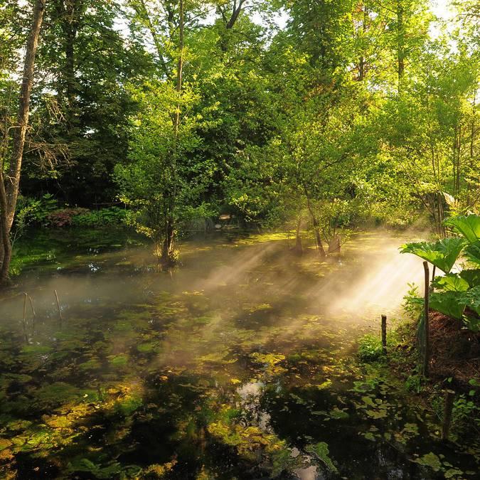Le jardin de Léonard de Vinci au Clos Lucé. © OTBC