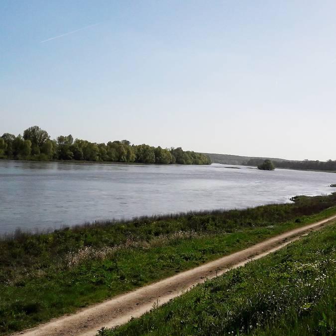 Les bords de Loire à Chouzy-sur-Cisse