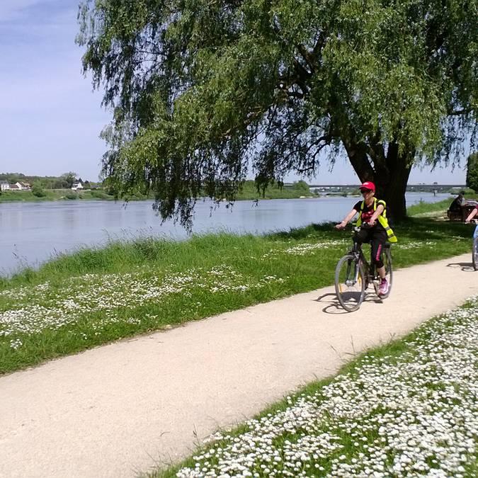 Vallée de la Loire. Piste cyclable