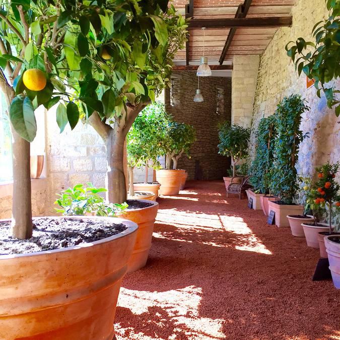 Les jardins de Château Gaillard. © OTBC