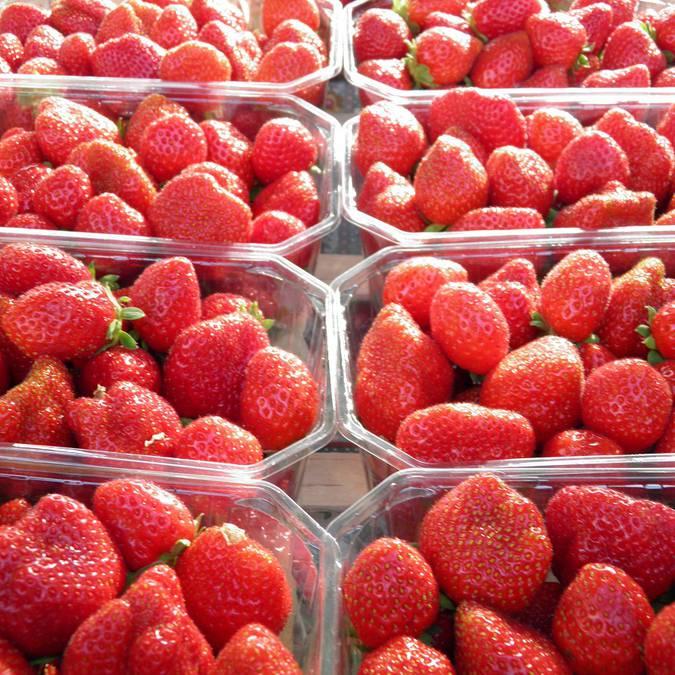 Les fraises à découvrir sur tous les marchés locaux. © OTBC